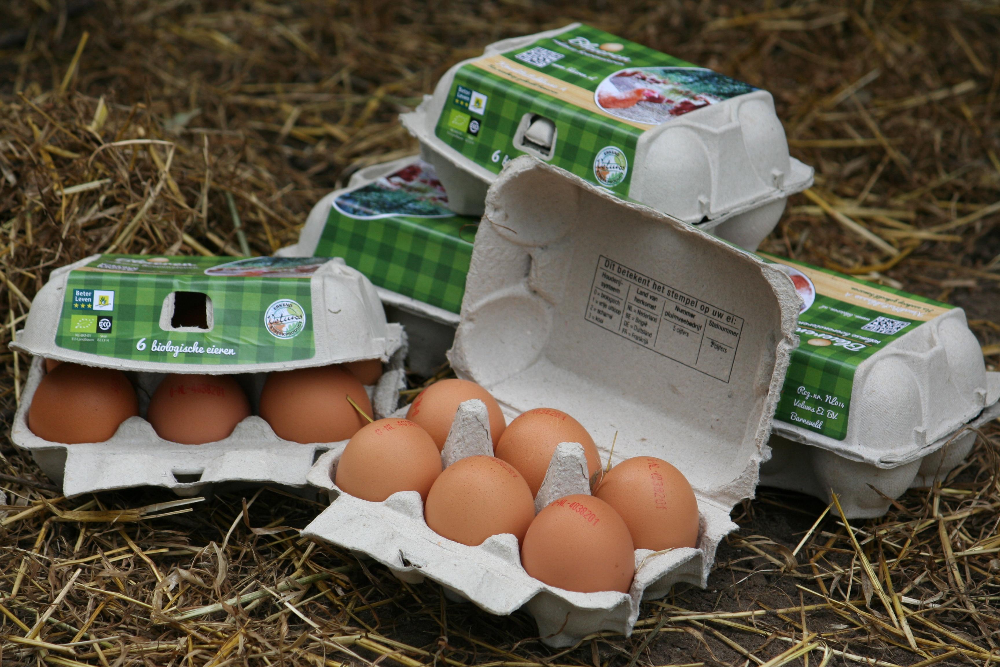 IMG_9365 eieren